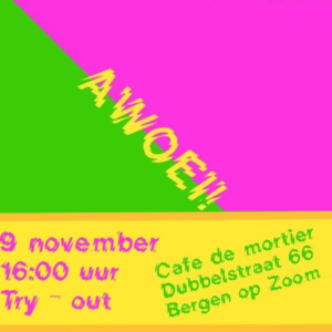 Awoei! de try-out